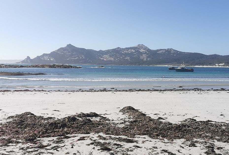Views of the mountains at Killiecrankie Bay on Flinders Island