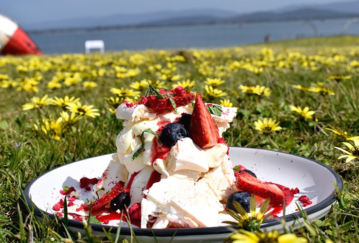 Eating a pavlova and berries on the green and flowers