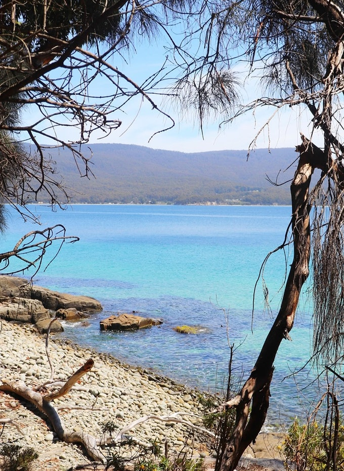 View of blue water from the Fluted Cape Walk on Bruny Island