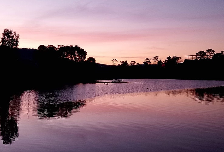 Purple sunset.
