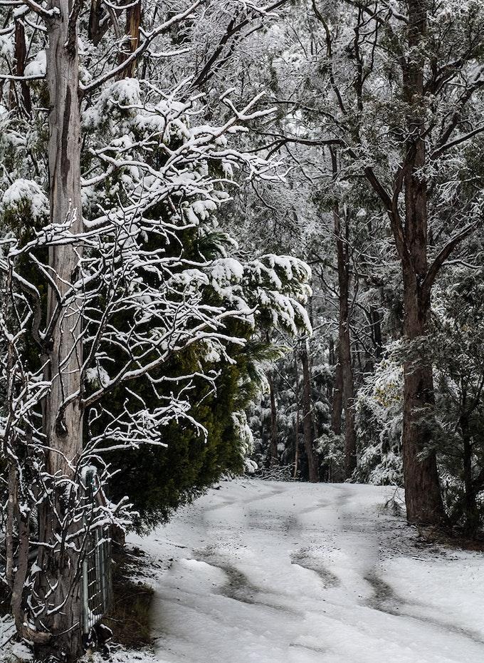 Snow path.