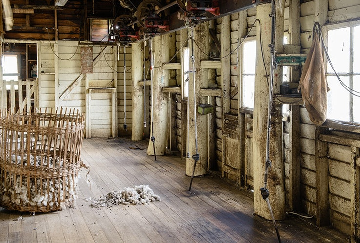 Inside the historic shearing shed.