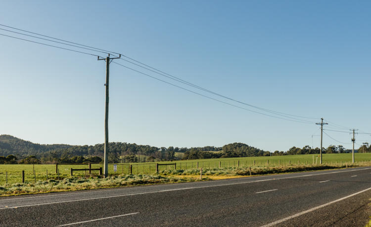Stretch of country road.