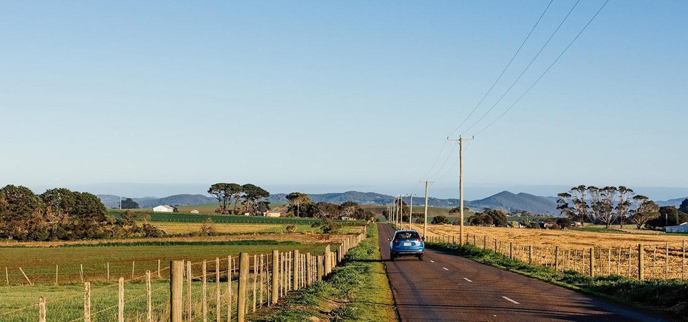 A rural Tasmanian road
