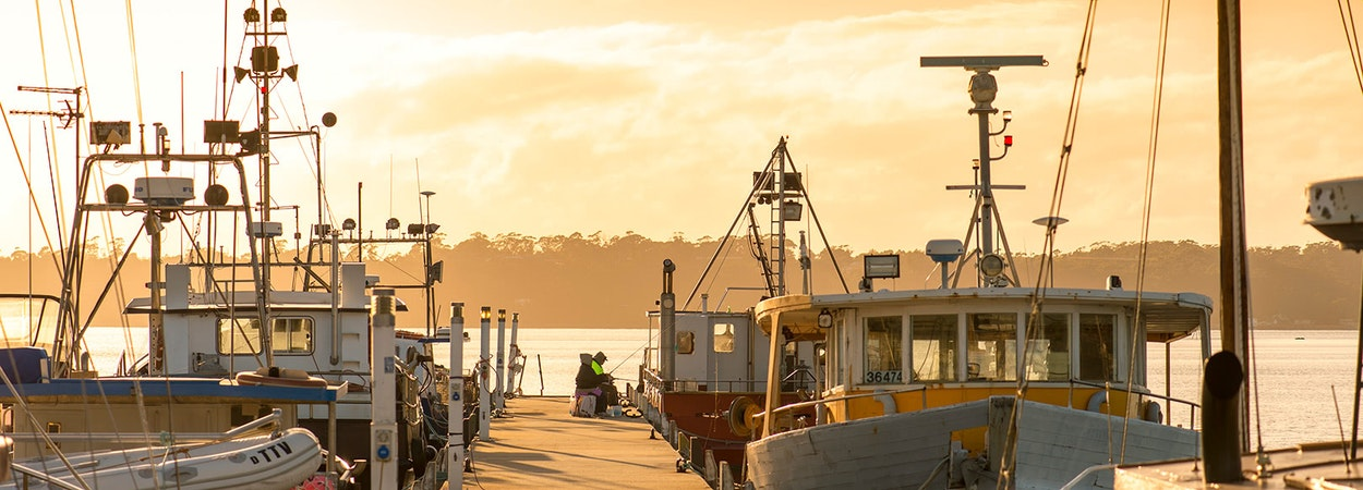 Fishing on the wharf