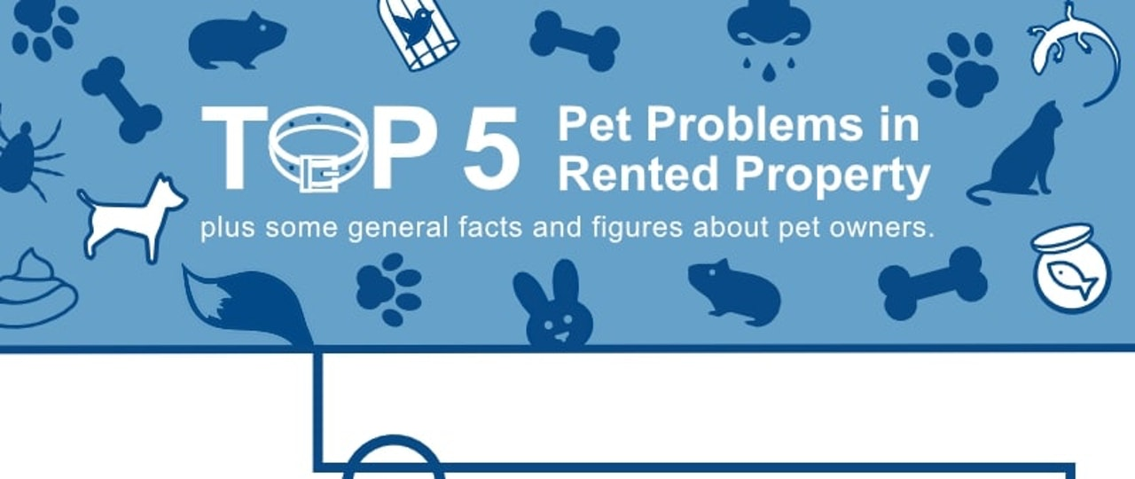 Top 5 Pet Problems in Rented Property Infographic