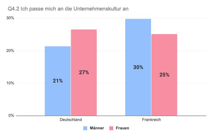 Vergleich Deutschland Frankreich Anpassung an Unternehmenskultur