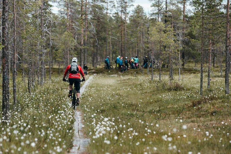 Foto: John-Andre Moldestad