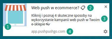 8 ważnych różnic pomiędzy newsletterem a web push