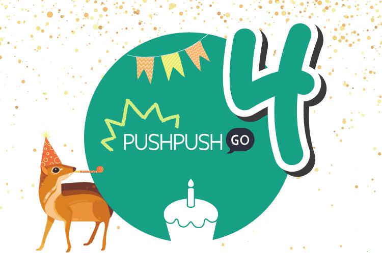 PushPushGo anniversary, web push notifications