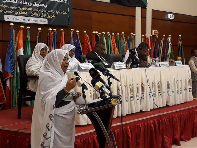 The 30th Ordinary Session of the African Committee of Experts on the Rights and Welfare of the Child (ACERWC) was held on 6 December in the capital city of Sudan.