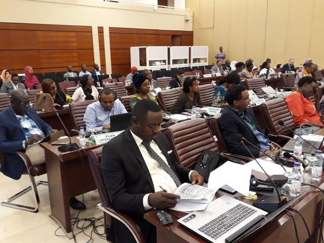 Participants at the gathering of African leaders to address child rights and welfare.