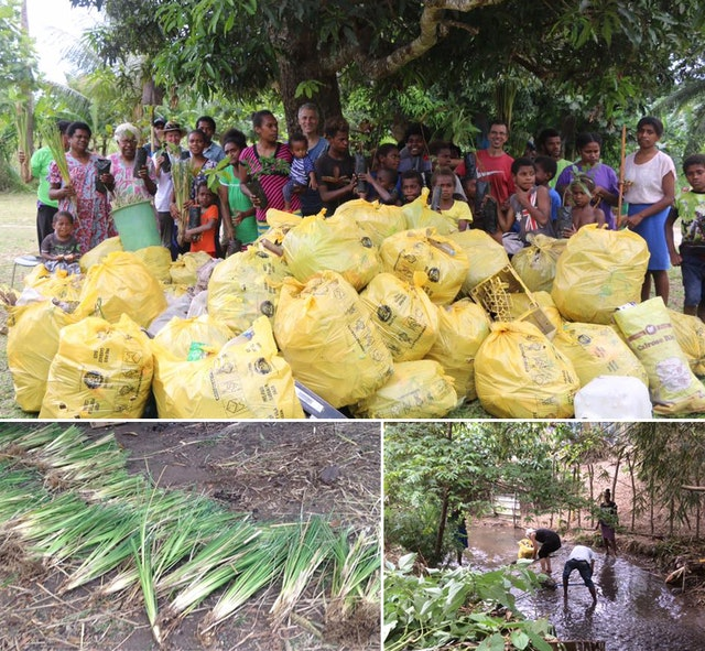 As part of initiatives to mark the bicentenary in a suburb of Port Vila, Vanuatu, friends, neighbors, and government officials collaborated to clean a river, clearing trash from the channel and planting riverbank grasses to prevent soil erosion.