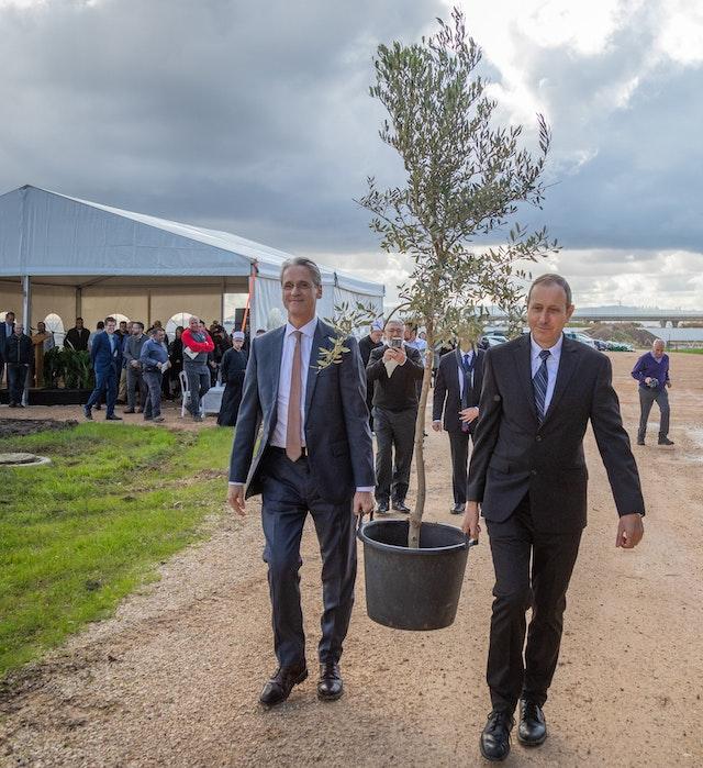 Le maire d'Acre, Shimon Lankri, et le secrétaire-général de la Communauté internationale bahá'íe, David Rutstein, portant un olivier lors de la cérémonie inaugurant le début des travaux de construction du mausolée de 'Abdu'l-Bahá.