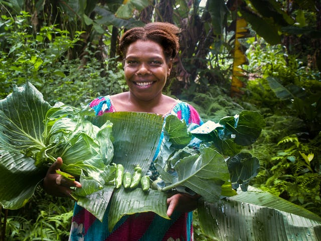 Participants in a Bahá'í-inspired educational program called Preparation for Social Action in Vanuatu are taking steps to maintain food supplies for their fellow citizens.