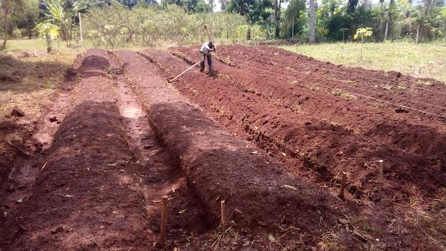 En Uganda, un grupo de participantes, con el apoyo de la Fundación Kimanya-Ngeyo, que desarrolla el programa PAS en el país, utiliza la radio local para difundir conocimientos en torno a  la producción alimentaria.