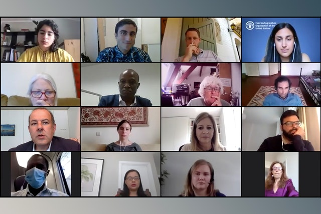 Some of the participants at an online discussion hosted by the Brussels Office of the Baha'i International Community (BIC) and the Food and Agriculture Organization of the United Nations, bringing together over 80 policymakers and other social actors from Africa and Europe to explore links between European agricultural policies and the adverse drivers of migration and in Africa.