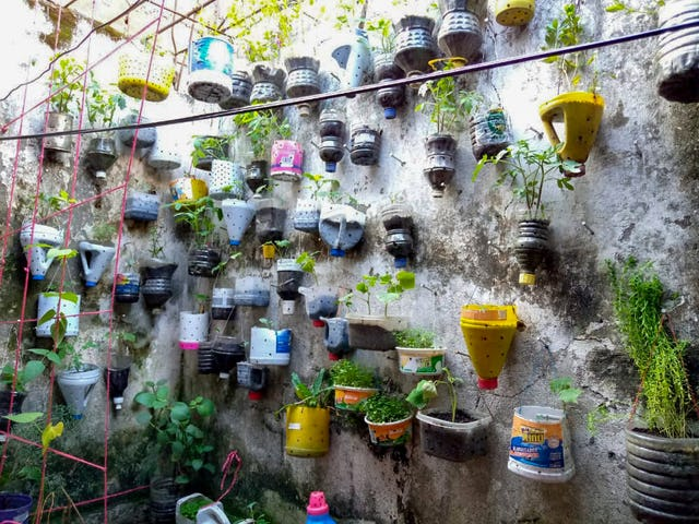 A family in Puerto Tejada, Cauca, Colombia made use of limited space by growing herbs and vegetables in recycled containers hung from a wall.