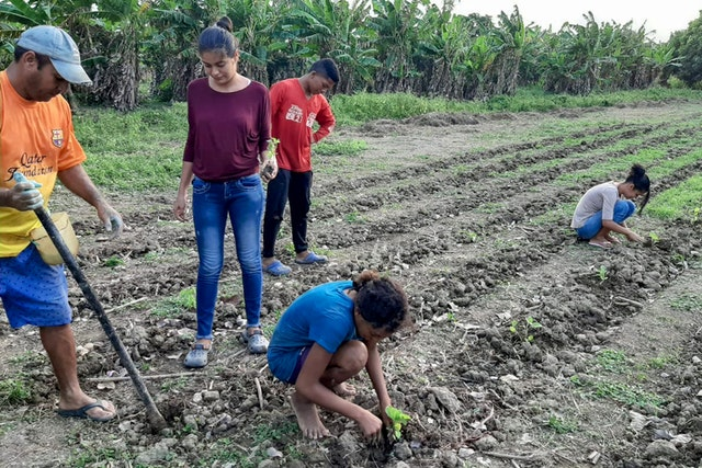 """Members of a family in Puerto Eugenio, Córdoba, Colombia, plant crops on a """"community learning plot"""" they started together with other members of their community and with the assistance of a group of young people studying FUNDAEC material as part of the Preparation for Social Action program."""