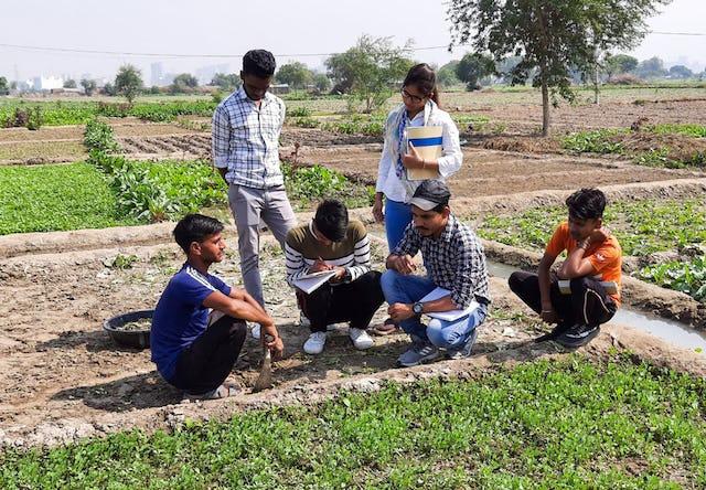 Fotografía realizada antes de la actual crisis sanitaria. La Comunidad Bahá'í de la India lleva años realizando actividades para promover la agricultura local como medio para afrontar los desafíos socioeconómicos. En la imagen, participantes del programa de inspiración bahá'í Preparación para la Acción Social estudian técnicas para la agricultura local.