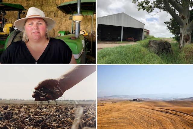 Des agriculteurs ainsi que des scientifiques agricoles et des responsables politiques de plusieurs pays se sont joints au tollé croissant suscité par la saisie par l'Iran de terres appartenant à des agriculteurs bahá'ís.