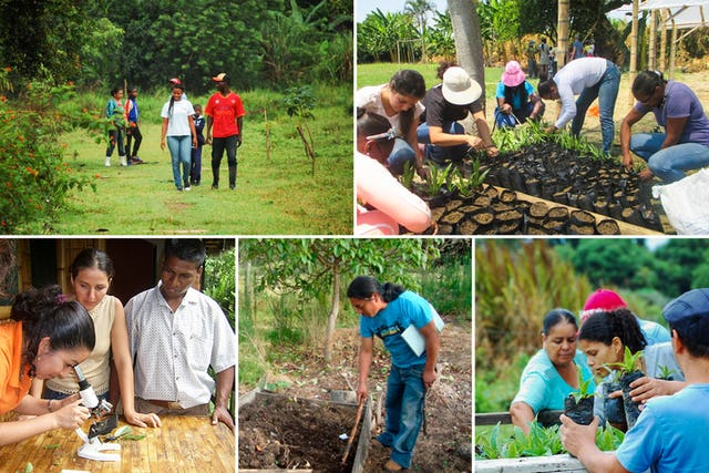 People engaged in different agricultural initiatives of Bahá'í communities in different countries.