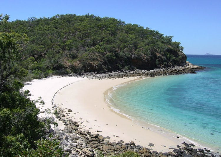 shelving beach great keppel island