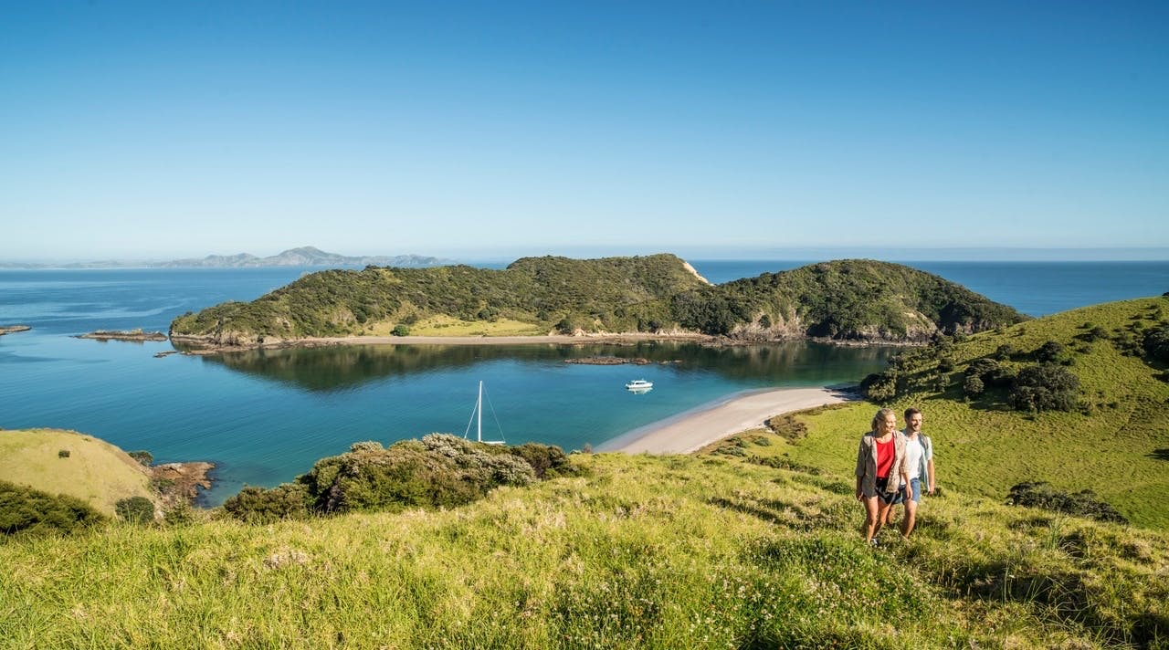 new zealand road trips auckland to bay of islands