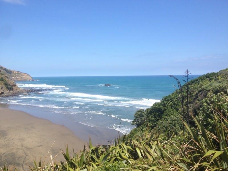 muriwai surf beach in auckland
