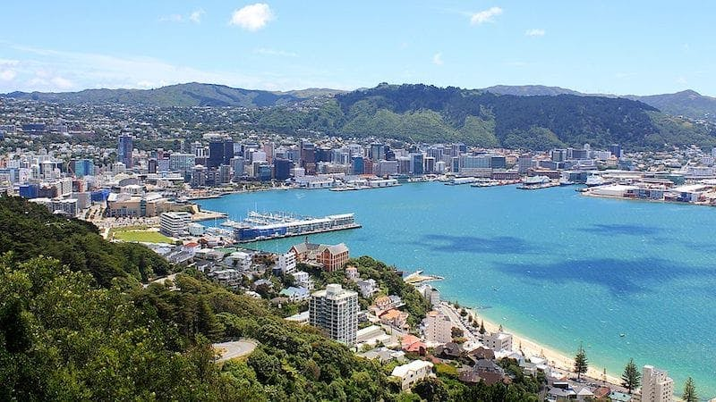 free things to do in wellington - walk to mount victoria
