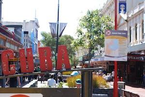 cuba street wellington free things to do