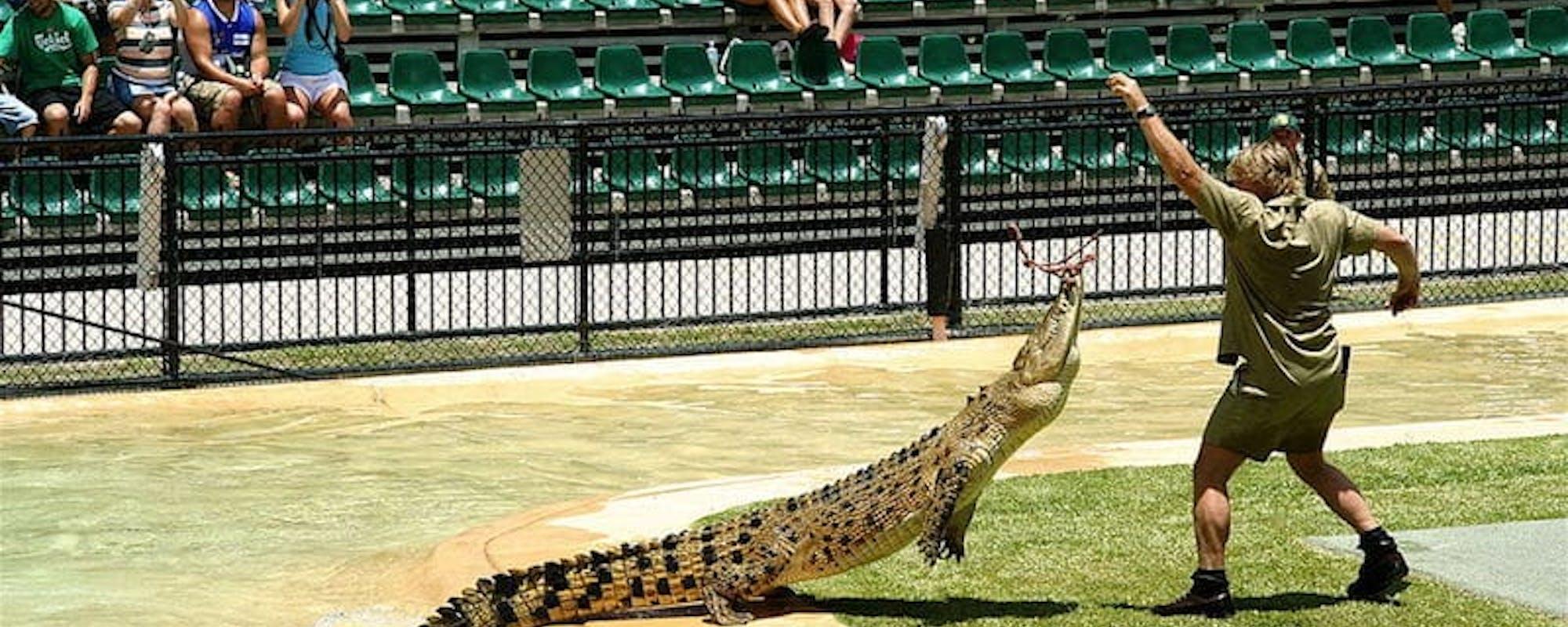 australia zoo brisbane attractions