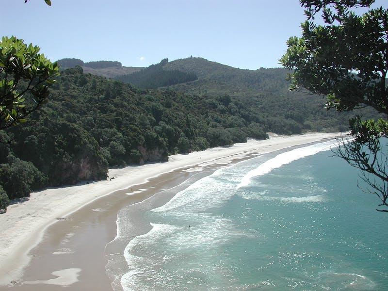 overlooking new chums beach new zealand
