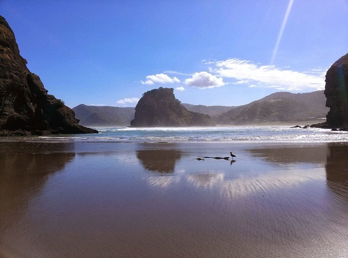 one of the best places to visit in new zealand - piha