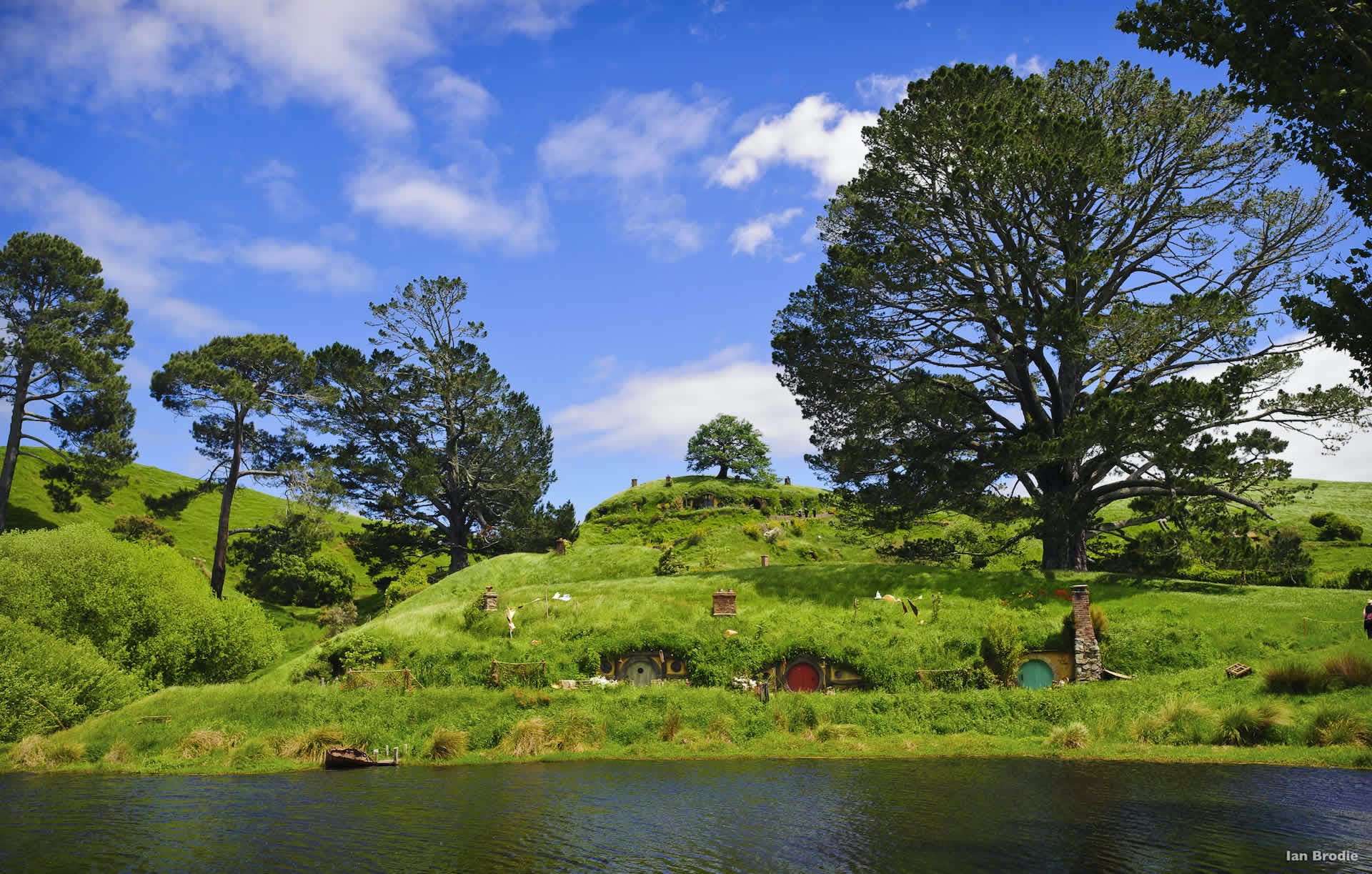 what to do in rotorua hobbiton