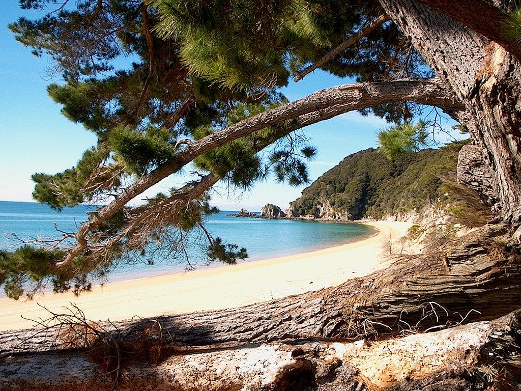secret beaches in new zealand