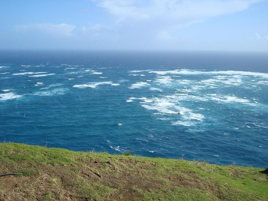 day tour from paihia to cape reinga