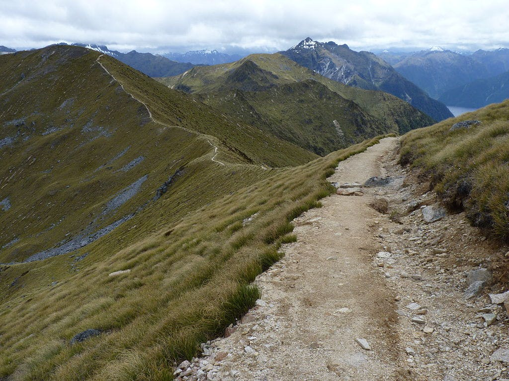 the kepler track nz 9 great walks new zealand