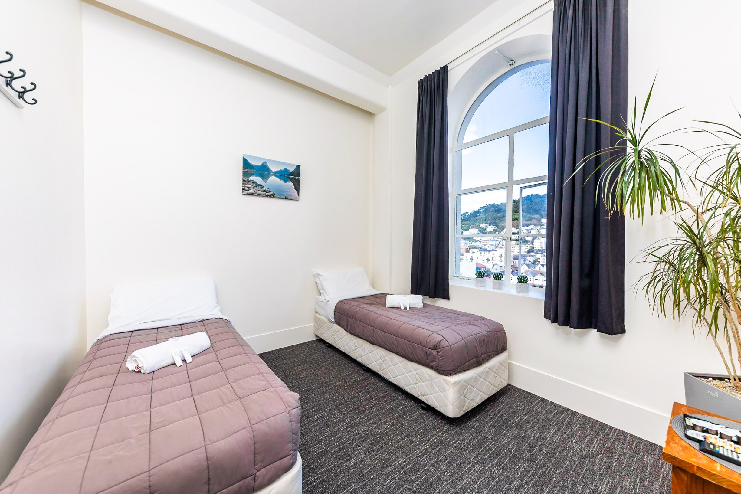 budget accommodation wellington
