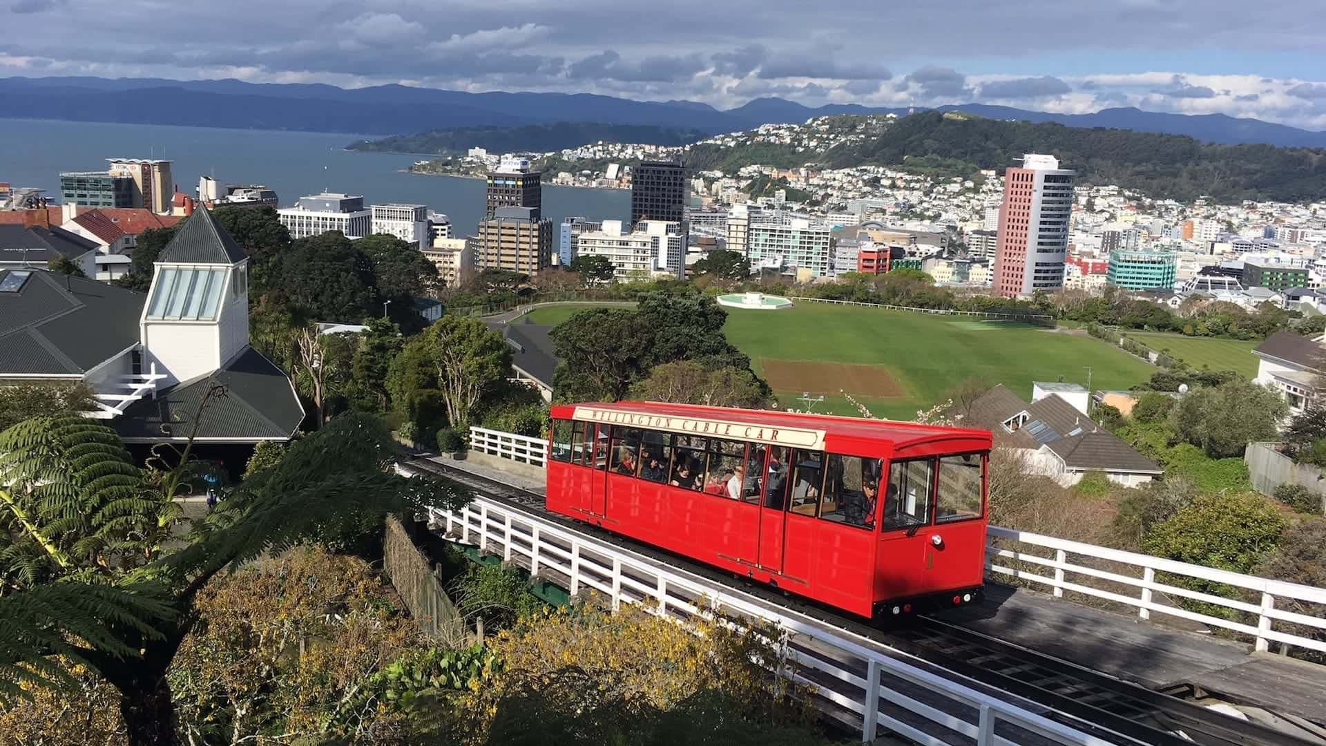 instagrammable places in wellington
