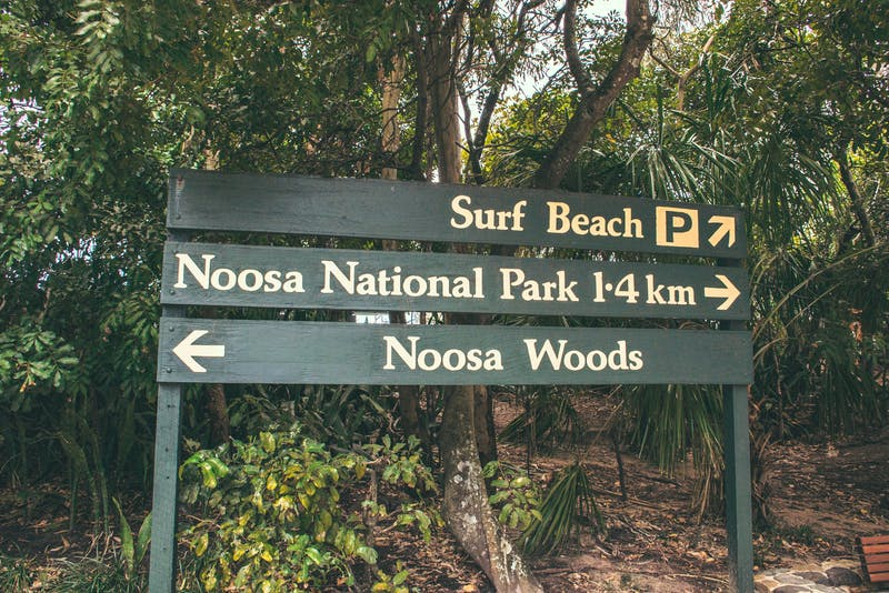 sign in noosa