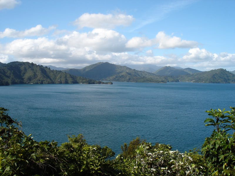 places to visit in summer in new zealand