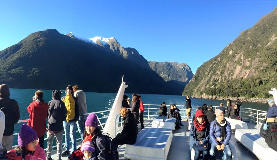 milford sound boat trip