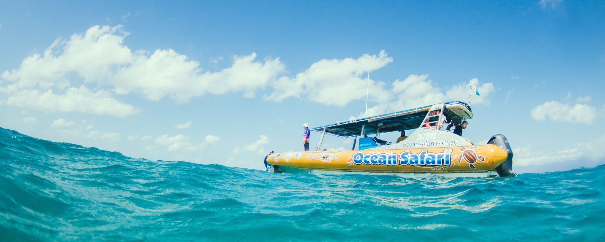 ocean safari cape tribulation