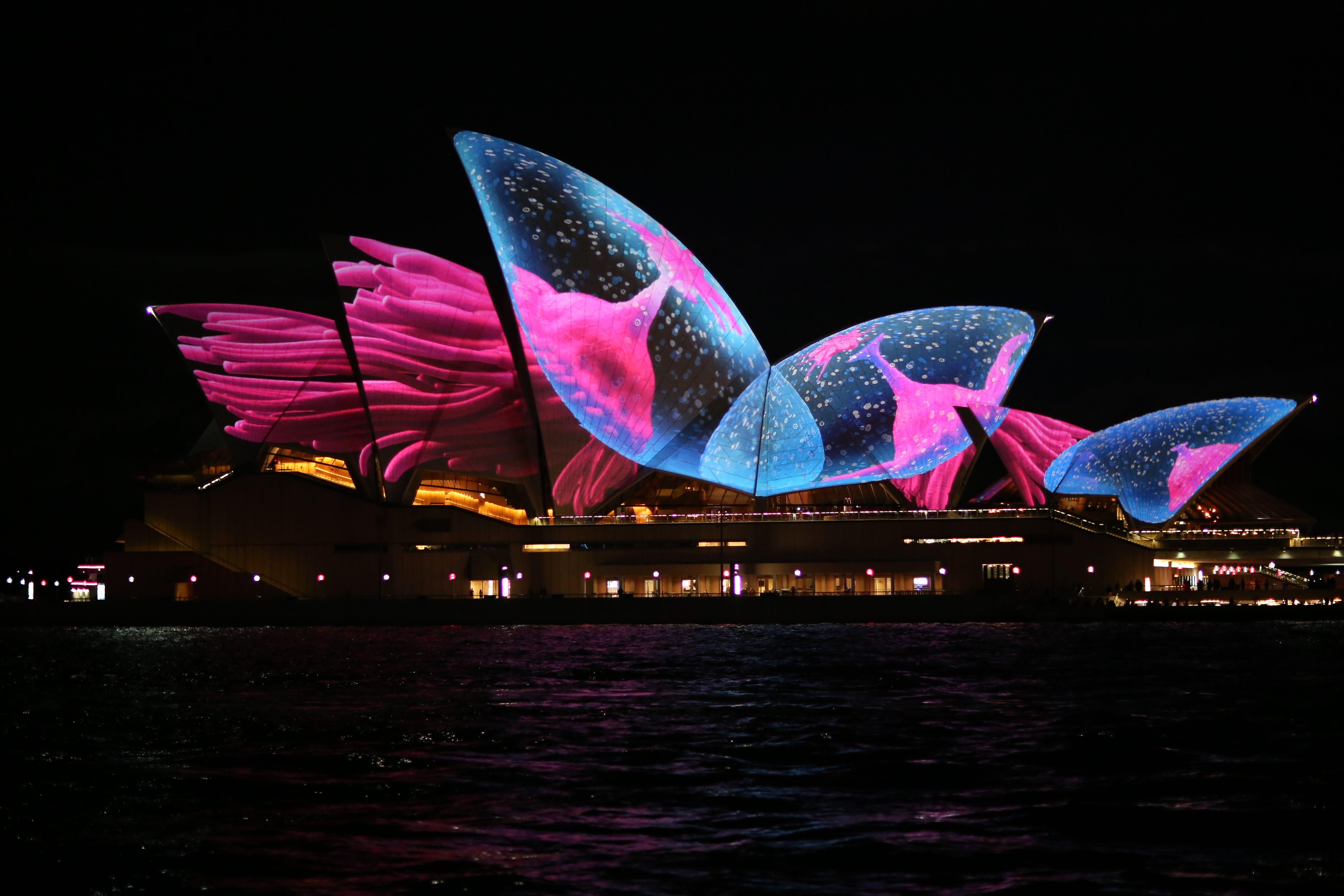 budget date ideas in Sydney