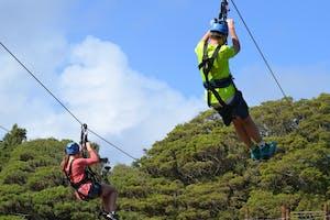 adventure activities new zealand