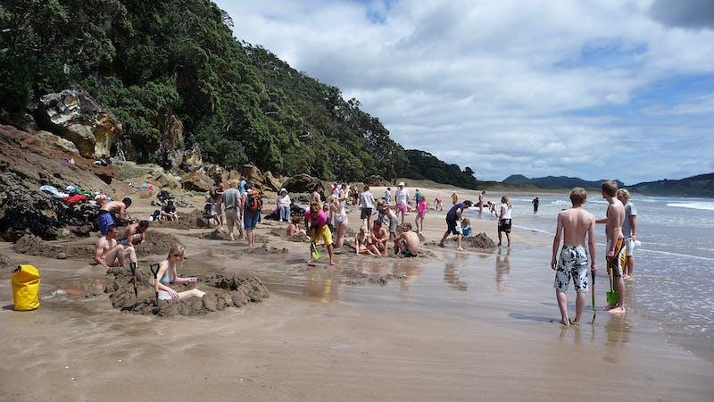 new zealand coastal destinations