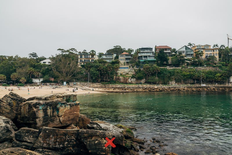 things to do in sydney shelly beach