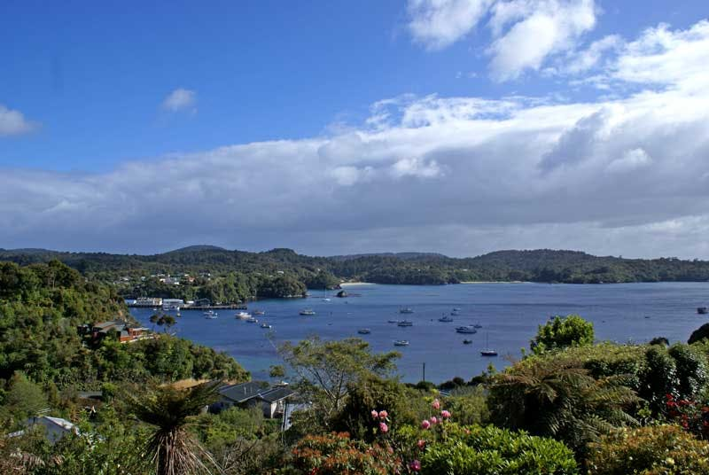 stewart island things to do