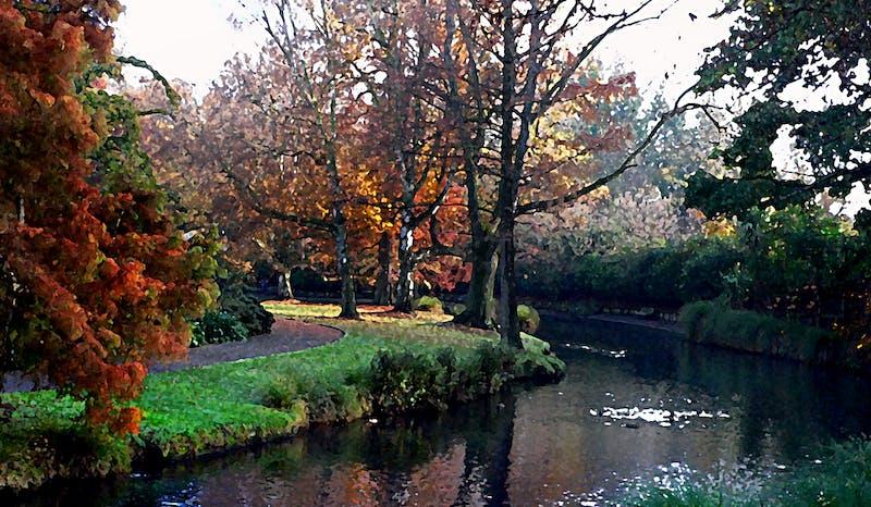 hagley park christchurch